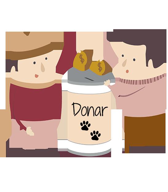 Donaciones Puntuales